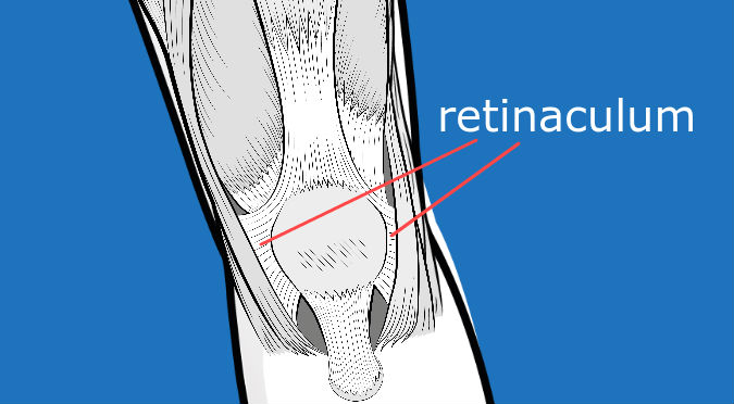 Anterior Knee Pain If you have chronic AKP, surgery may be considered